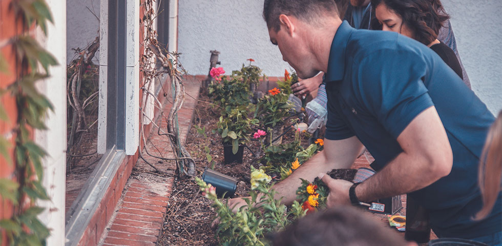 Post billede 5 tips til at skabe en fælleshave Giv ansvaret til nogen - 5 tips til at skabe en fælleshave