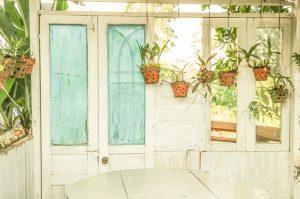 Post billede 5 typiske problemer med indendørs haver Bakterier og sygdomme 300x199 - Post-billede-5-typiske-problemer-med-indendørs-haver-Bakterier-og-sygdomme