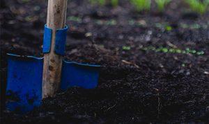 Post billede 6 tips at holde haven sund Tilsæt god gødning 300x179 - Post-billede-6-tips-at-holde-haven-sund-Tilsæt-god-gødning