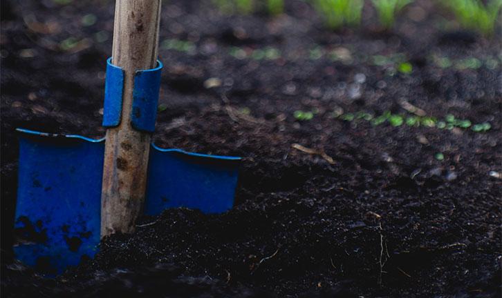 Post billede 6 tips at holde haven sund Tilsæt god gødning - 6 tips at holde haven sund