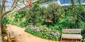 Udvalgt billede 6 tips at holde haven sund 300x147 - Udvalgt-billede-6-tips-at-holde-haven-sund