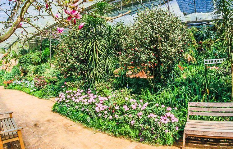 Udvalgt billede 6 tips at holde haven sund 750x480 - 6 tips at holde haven sund
